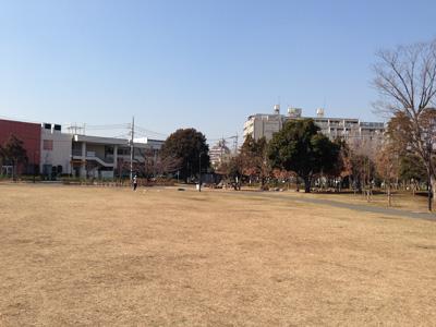 higakaku1